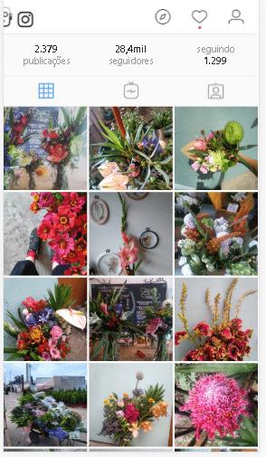 marketing digital para floricultura