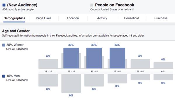 Facebook Ads Manager 6
