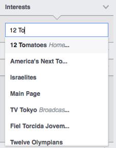 Facebook Ads Manager 9