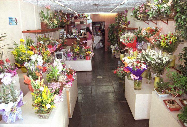 como criar uma floricultura