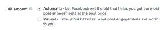 opções de lance de anúncio do Facebook, manual e automático